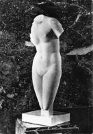 France Paris Musee Du Louvre Aphrodite De Cnide Marbre Statue Postcard - France