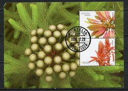 Madère - Madeira - Portugal Bloc Feuillet 2006 Y&T N°BF250 à 251 - Michel N°B(?) (o) - Fleurs De Madère - Madère