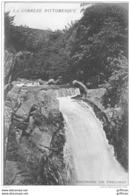 ENVIRONS DE TREIGNAC LA CASCADE DU SAUT DE LA VIROLLE 1908 TBE - Treignac