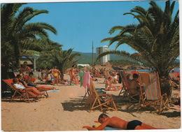 Mallorca - Palma Nova - Mallorca