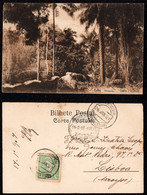1907 - Portugal Guinea Bissau Postcard Circulated From S. Tomé To Lisbon. Geba Surroundings. Jungle. Trees. 10r Stamp. - Guinea-Bissau