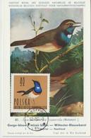 Pologne Carte Maximum Oiseaux 1964 Gorge Bleue 1348 - Cartoline Maximum