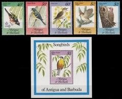 Antigua 1984 - Mi-Nr. 795-799 & Block 81 ** - MNH - Vögel / Birds - Antigua Und Barbuda (1981-...)