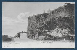 BONNE SUR MENOGE - Les Ruines Du Château - Bonne