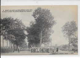 Saint-Hilaire De Chaléons-Avenue Du Bois-Rouaud Et Route Du Pellerin - France