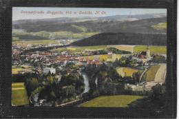 AK 0388  Gloggnitz - Verlag Ledermann Um 1912 - Semmering