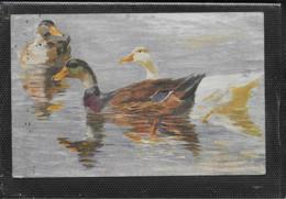 AK 0388  Heyden , H. V. - Enten / Künstlerkarte Um 1917 - Vögel
