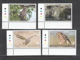UU856 !!! EXCLUSIVE 2019 AITUTAKI FAUNA BIRDS OWLS $42 US NOMINAL 1SET MNH - Eulenvögel