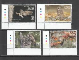 UU857 !!! EXCLUSIVE 2019 TONGA FAUNA BIRDS OWLS $41 US NOMINAL 1SET MNH - Eulenvögel