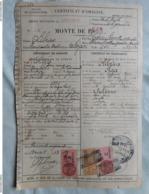 Direction Des Haras Certificat De Saillie 1943 - Documentos Antiguos