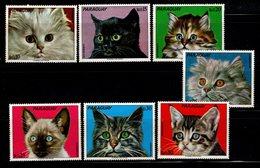 PARAGUAY - Chats - YT N° 1306 / 1312 - ** - Série Complète - Katten