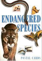 Livret 15 CP Endangered Species - PJ San Diego Zoo 02/10/1996 - 1981-00