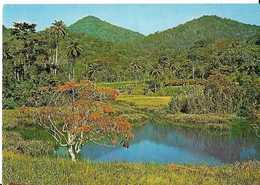 CP GUINEE -sérédou -macenta - Guinea