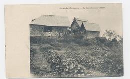 GRANDE COMORE LA CONVALESCENCE (1800m) - Comoren
