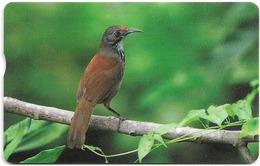 Taiwan - Chunghwa Telecom (Chip) - Bird On Tree Branch - 210U, Exp. 31.12.2006, Used - Taiwán (Formosa)