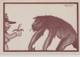 Illustrateurs - Vigneron - Congo Belge - Banane - Singe Gorille - N° 6 - Ilustradores & Fotógrafos