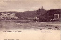 Ruines De Beaufort Nels Série 7 N° 106 - Huy