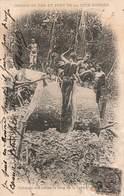 Cote Ivoire Cpa Débitage Des Arbres Le Long Ligne Chemin De Fer + Timbre Cachet 1905 Poste Maritime Loango Bordeaux - Côte-d'Ivoire