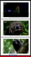 Ref. BR-V2019-22 BRAZIL 2019 ANIMALS, FAUNA, BRAZILIAN FAUNAL RICHNESS, , INSECTS, MONKEY, MANED SLOTH, MNH 3V - Ungebraucht
