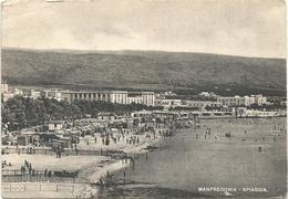 Y4716 Manfredonia (Foggia) - Panorama Della Spiaggia - Beach Plage Strand Playa / Viaggiata 1952 - Manfredonia