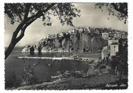 2012 - AGROPOLI ALTO SALERNO 1955 - Salerno