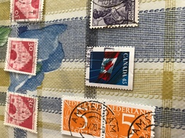 CANADA BANDIERA 5 - Stamps