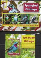GUYANA, 2019, MNH,  BIRDS, SPANGLED COTINGA, SHEETLET+S/SHEET , HIGH FV - Pájaros