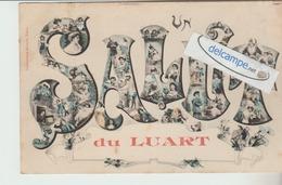 LE LUART : Un Salut . - France