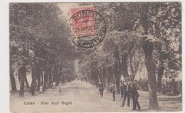 Cuneo Viale Degli Angeli - Sonstige