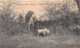 ¤¤   -   SAINT-PIERRE-L'EGLISE  -  Le Menhir De La Chasse Des Pâtures  -  Mégalithe  -  Moutons   -  ¤¤ - Saint Pierre Eglise