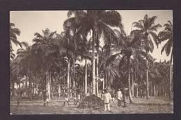 CPA Dahomey Afrique Noire Cotonou Carte Photo RPPC Non Circulé Voir Scan Du Dos - Dahomey
