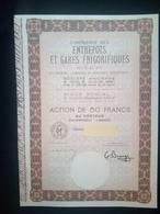 """1 Cie Des Entrepots Et GARES Frigorifiques """"C.E.G.F) Action (Titres Annulé Bon Pour La Collection) + Coupons - Aandelen"""