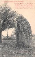 ¤¤   -   COSQUEVILLE   -  La Pierre-Plantée  -  Mégalithe  -   Menhir   -  ¤¤ - Autres Communes