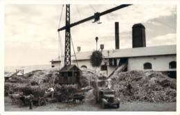 Photo Antilles Française - Travail De La Canne à Sucre 1958, Campagne Sucrière Au Fond L'usine, Cannes, Grue, ... - Berufe