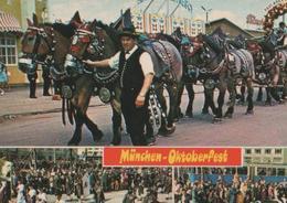 München - Oktoberfest Mit Sechsergespann - Ca. 1975 - Muenchen