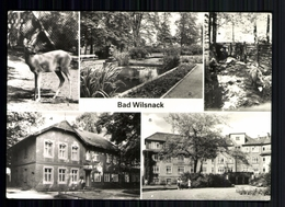 Bad Wilsnack Kr. Perleberg, Tierpark, Haus Birkengrund, Goethehaus - Deutschland