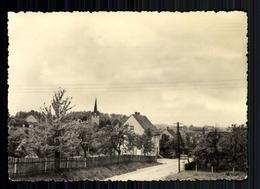 Niedersteinbach Kr. Geithain, Teilansicht Mit Kirche - Deutschland