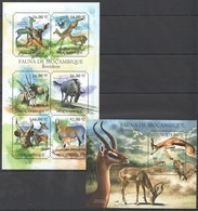 BC1063 2011 MOZAMBIQUE MOCAMBIQUE FAUNA ANIMALS BOVIDEOS 1SH+1BL MNH - Stamps