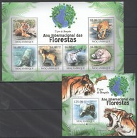 BC1271 2011 MOZAMBIQUE MOCAMBIQUE FAUNA DAS FLORESTAS ANIMALS TIGRE DE BENGALA 1SH+1BL MNH - Félins