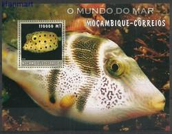 Mozambique 2002 Mi Bl181 MNH ( ZS6 MZBbl181 ) - Fishes