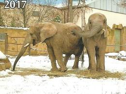 ELEPHANT * ANIMAL * CALENDAR * Ivo-turista 2017 * Czech Republic - Calendari