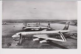 Vintage Rppc KLM K.L.M Royal Dutch Airlines Convair 340 & Viscount Douglas Dc7 Dc-8 @ Schiphol Airport - 1919-1938: Between Wars