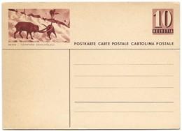 "240 - 33 - Entier Postal Neuf Avec Illustration ""Bern - Tierpark"" - Ganzsachen"