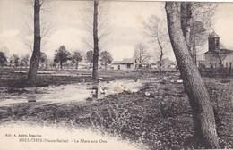Haute-Saône - Breuches - La Mare Aux Oies - Sonstige Gemeinden