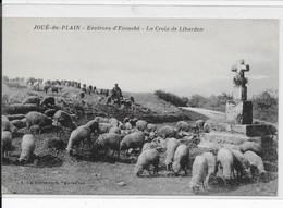 """Joué-du-Plain-Environs D""""Ecouché-La Croix De Libardon - Otros Municipios"""