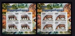 Les Hippopotames Burundais Emboutissent Des Dents - Sonstige