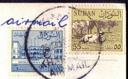 SUDAN - CATTLE  Office  MAIL. - 1973 - RARE - Farm