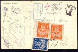JUGOSLAVIA - SLOVENIA - PORTO  2x1 + 2 Din   MISLINJA  To VOJNIK - 1950 - Postage Due
