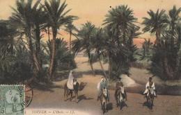 TOZEUR. - L'Oasis - Tunisie