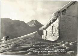 Y4735 Parco Nazionale D'Abruzzo (L'Aquila) - Rifugio Di Forca Resuni E Monte Petroso / Viaggiata 1958 - Italia